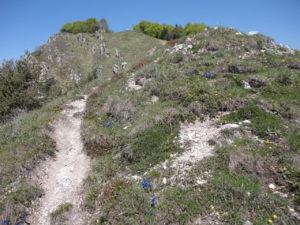 c.A.m.M.iniamo sui monti di Tremosine